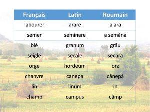 Liste no3 de mots en français, latin et roumain