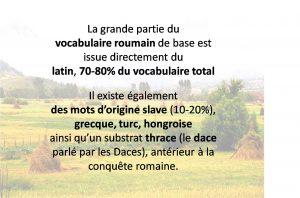 Vocabulaire de la langue roumaine